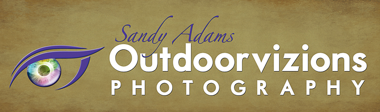 Outdoorvizions Photography